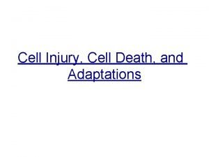 Cell Injury Cell Death and Adaptations Cell adaptation