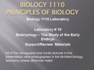 BIOLOGY 1110 PRINCIPLES OF BIOLOGY Biology 1110 Laboratory