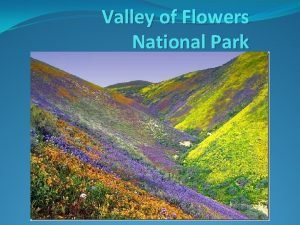 Valley of Flowers National Park Valley of Flowers