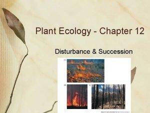 Plant Ecology Chapter 12 Disturbance Succession Succession Temporal