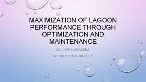 MAXIMIZATION OF LAGOON PERFORMANCE THROUGH OPTIMIZATION AND MAINTENANCE