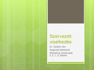 Szervezeti viselkeds Dr Gykr Irn Szigorlati felkszt Marketing