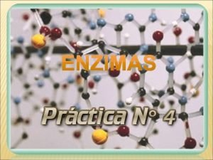 ENZIMAS 1 Concepto de enzima 2 Concepto de