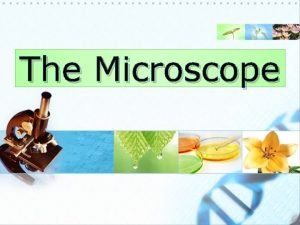 The Microscope The Microscope An Introduction The microscope