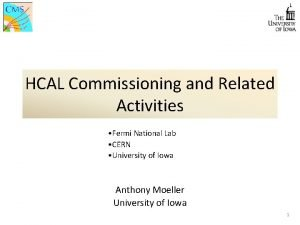 HCAL Commissioning and Related Activities Fermi National Lab