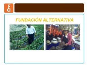 FUNDACIN ALTERNATIVA FUNDACIN ALTERNATIVA PRODUCTOS DE MICROCREDITO CONDICIONESREQUISITOS