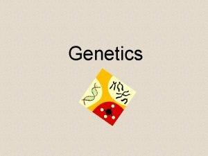 Genetics What is Genetics Branch of Biology that
