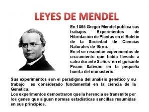LEYES DE MENDEL En 1865 Gregor Mendel publica