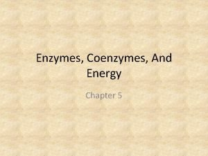 Enzymes Coenzymes And Energy Chapter 5 Nutrients Nutrients
