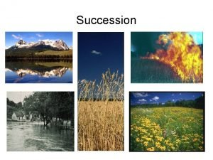 Succession Succession in Communities Succession is the process