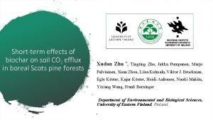 Shortterm effects of biochar on soil CO 2