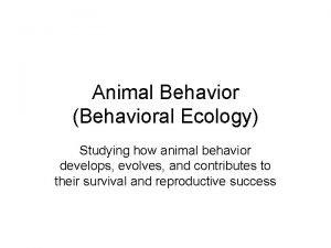 Animal Behavior Behavioral Ecology Studying how animal behavior