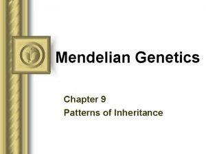Mendelian Genetics Chapter 9 Patterns of Inheritance Gregor