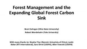 Forest Management and the Expanding Global Forest Carbon