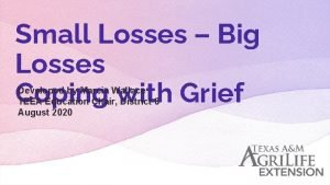 Small Losses Big Losses Coping with Grief Developed