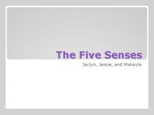 The Five Senses Jaclyn Jessie and Makayla First
