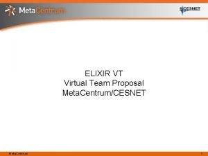 ELIXIR VT Virtual Team Proposal Meta CentrumCESNET Meta