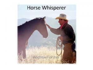 Horse Whisperer Andrew Forster What is a Horse