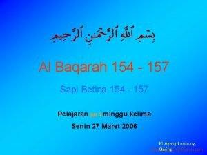 Al Baqarah 154 157 Sapi Betina 154 157