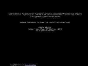 Subversion of Autophagy by Kaposis SarcomaAssociated Herpesvirus Impairs