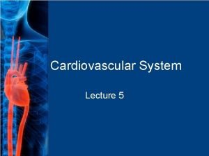 Cardiovascular System Lecture 5 General The cardiovascular system