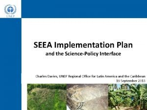 SEEA Implementation Plan and the SciencePolicy Interface Charles
