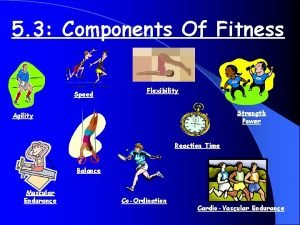 5 3 Components Of Fitness Speed Flexibility Strength