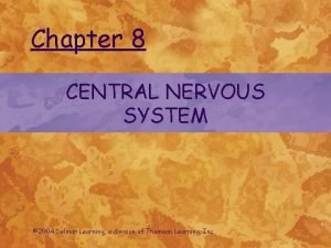Chapter 8 CENTRAL NERVOUS SYSTEM 2004 Delmar Learning