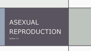 ASEXUAL REPRODUCTION Section 5 2 Asexual Reproduction In