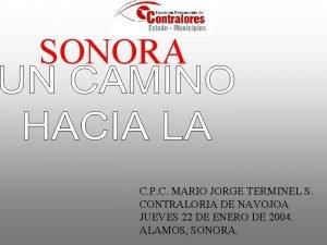 SONORA C P C MARIO JORGE TERMINEL S