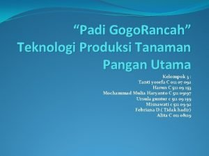 Padi Gogo Rancah Teknologi Produksi Tanaman Pangan Utama