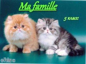 Ma famille 5 Une m re e r