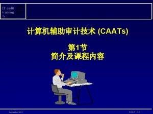 IT audit training for CAATs 1 September 2004