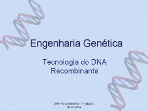 Engenharia Gentica Tecnologia do DNA Recombinante Produo de