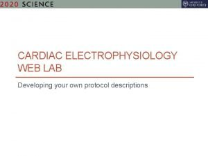 CARDIAC ELECTROPHYSIOLOGY WEB LAB Developing your own protocol