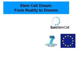 Stem Cell Dream From Reality to Dreams Stem