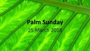 Palm Sunday 25 March 2018 Palm Sunday Triumphant