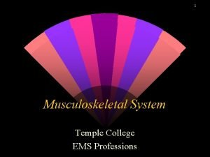 1 Musculoskeletal System Temple College EMS Professions Musculoskeletal