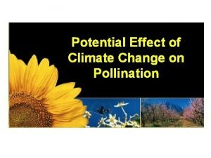 Potential Effect of Climate Change on Pollination On