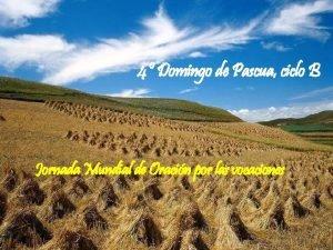 4 Domingo de Pascua ciclo B Jornada Mundial