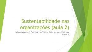 Sustentabilidade nas organizaes aula 2 Luciana Matsumura Tiely