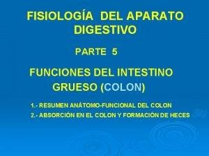 FISIOLOGA DEL APARATO DIGESTIVO PARTE 5 FUNCIONES DEL