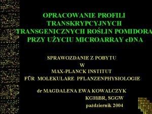 OPRACOWANIE PROFILI TRANSKRYPCYJNYCH TRANSGENICZNYCH ROLIN POMIDORA PRZY UYCIU