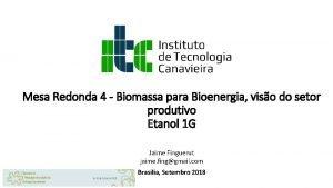 Mesa Redonda 4 Biomassa para Bioenergia viso do