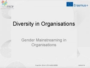 Diversity in Organisations Gender Mainstreaming in Organisations Project