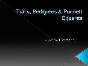 Traits Pedigrees Punnett Squares Juanya Simmons Traits are