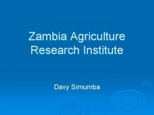 Zambia Agriculture Research Institute Davy Simumba Vision To