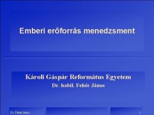Emberi erforrs menedzsment Kroli Gspr Reformtus Egyetem Dr