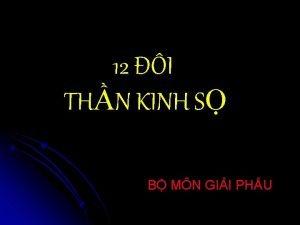 12 I THN KINH S B MN GII