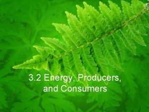 3 2 Energy Producers and Consumers Primary Producers